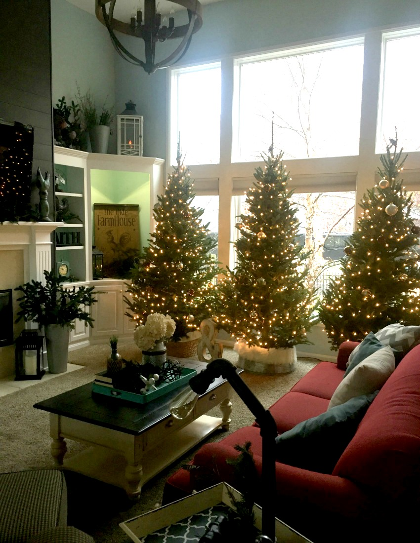 3 Christmas trees in family room