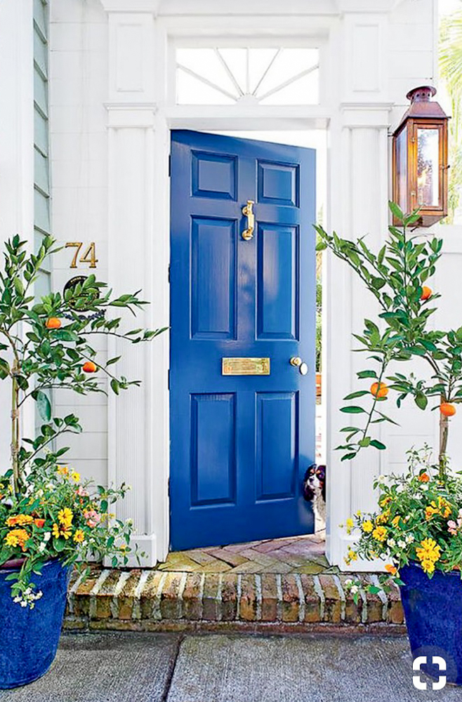Bold electric blue front door