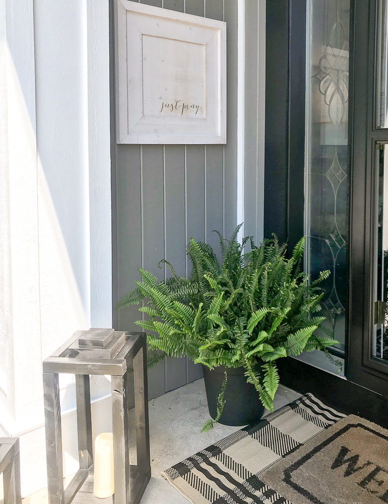 front porch with fern, picture, and lanterns