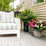 modern outdoor chair with plants