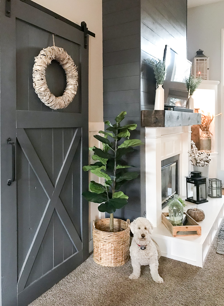 side angle of sliding barn door with goldendoodle pup sitting pretty