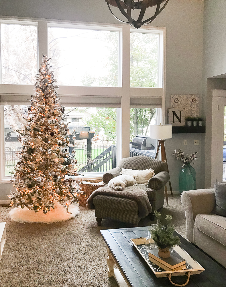 Christmas tree in front of large windows
