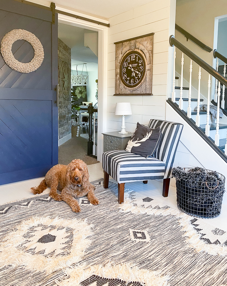 Goldendoodle laying on a rug in front of a sliding barn door