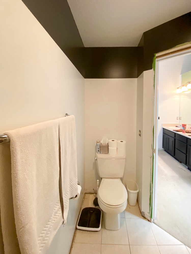 water closet color blocked in white and black