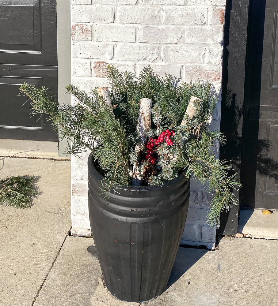 Flower pot with Christmas greens and birch branches